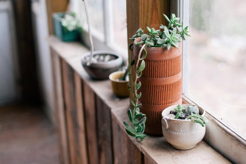 Vasos e Cachepots Dicas de Decoração Dadivária peitoral da janela